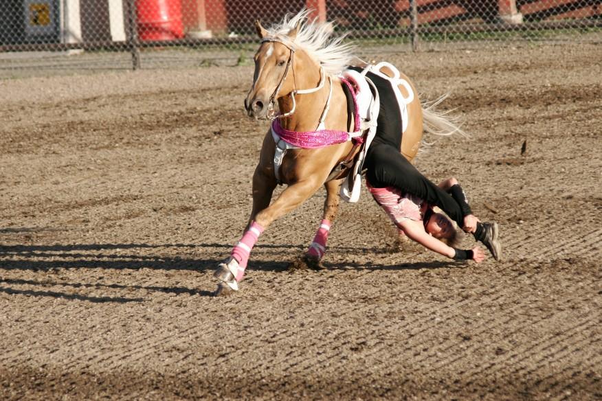 Tricks auf dem Pferd
